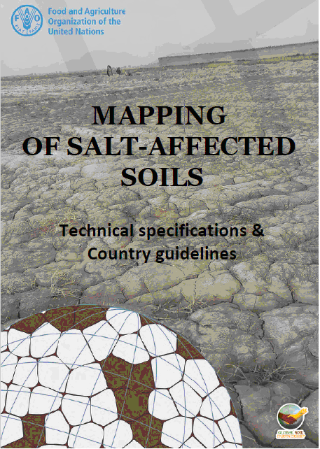 Mappping of Salt Affected Soils