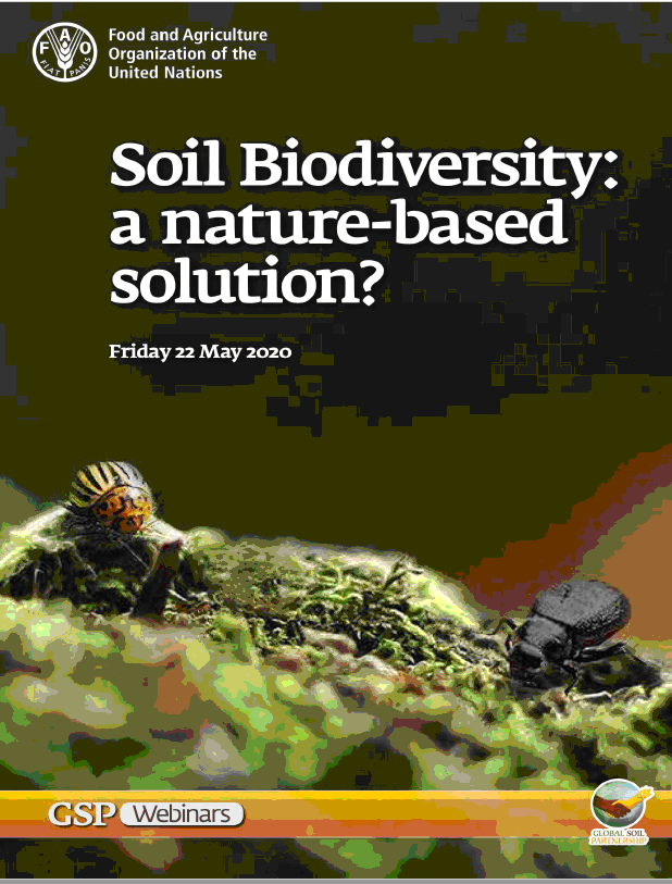 Soil biodiversity a nature based solution